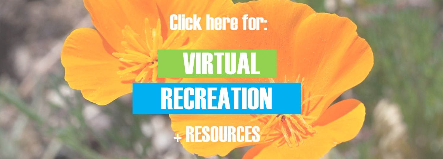 click here for virtual recreation and resources